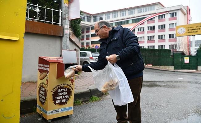 Bayat ekmekler çöpe değil, sokak hayvanlarına gidiyor