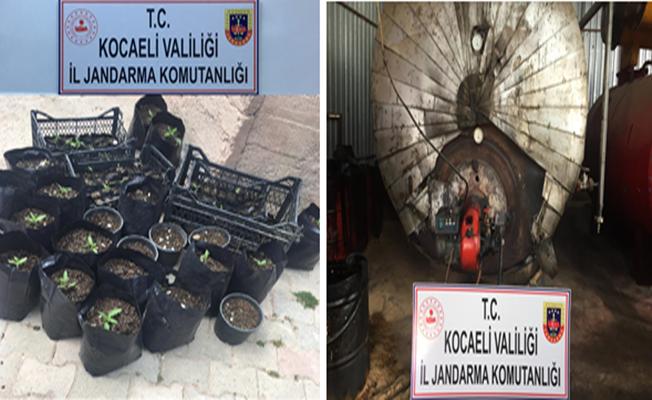 Jandarma'dan kaçak akaryakıt ve uyuşturucu operasyonu