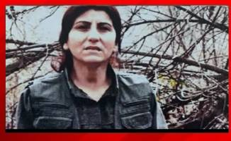 MİT ve TSK'dan PKK'ya darbe!