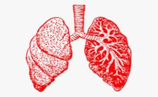 Akciğer Hastalıkları ve Solunum Rahatsızlıkları