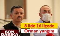 Pakdemirli'den kritik açıklama Türkiye'de 8 ilde 16 ilçede orman yangını